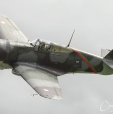 Flying Legends 2008 005